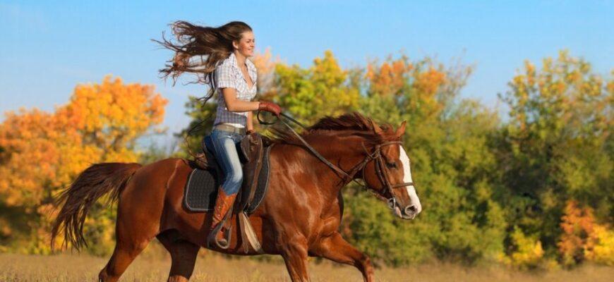 Девушка катается на лошади