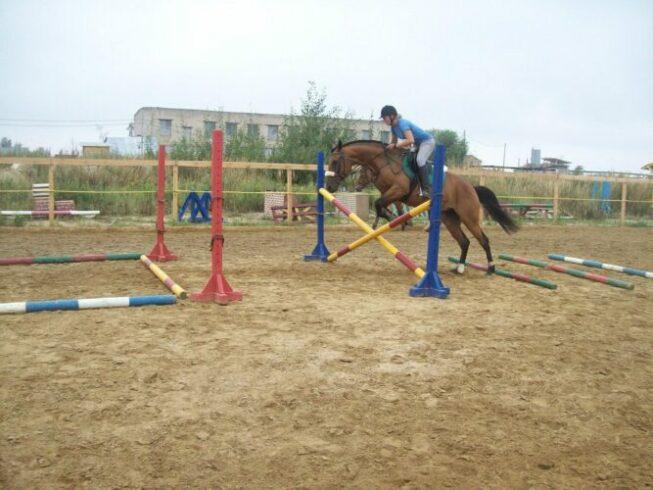 Девушка на лошади прыгает через препятствие