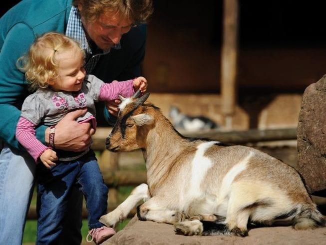 Папа с дочкой в зоопарке