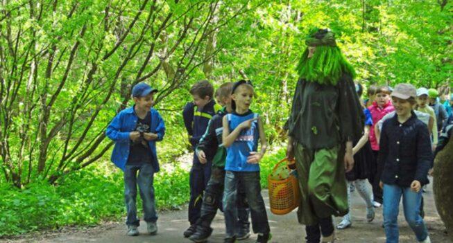 Прогулка с детьми в парке