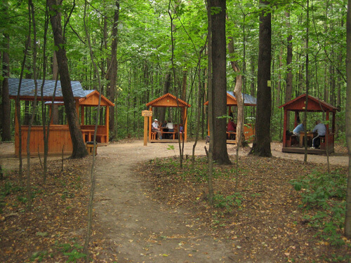 Беседки в Химкинском лесопарке