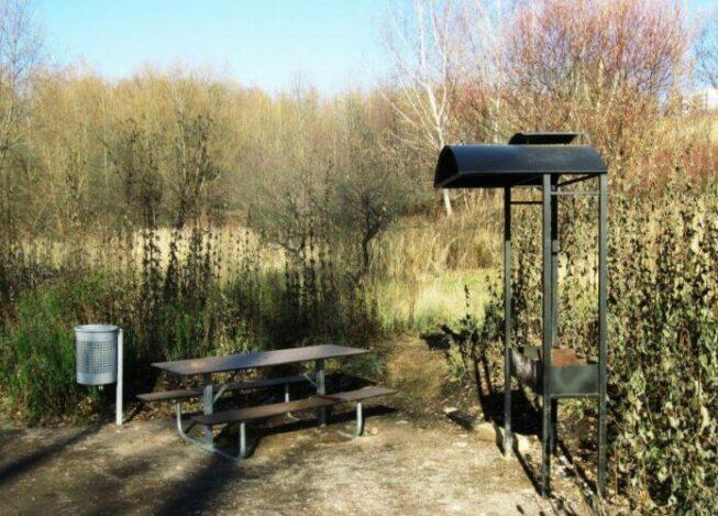 Мангал и зона отдыха в Царицынском лесопарке