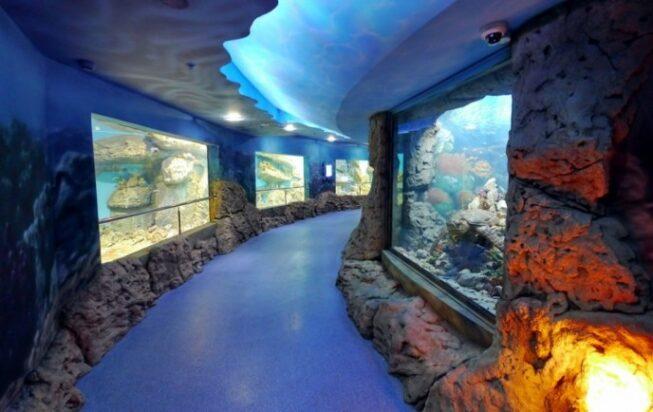 Океанариум «Тайны океана» в Моксве