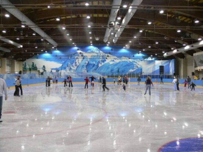 Ледовый клуб Айс Парк